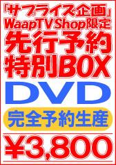 完全予約生産ユーチョイ!!【DVD】先行予約特別BOX【WaapTV限定】