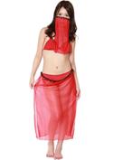 Costume Collection パーティーナイトドレス(P-002)アラビア風/レッド