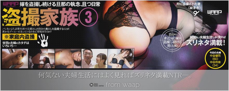 盗撮家族 3/中谷玲奈